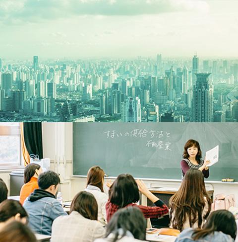 国际都市学系